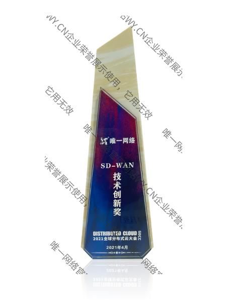 SD-WAN技术创新奖