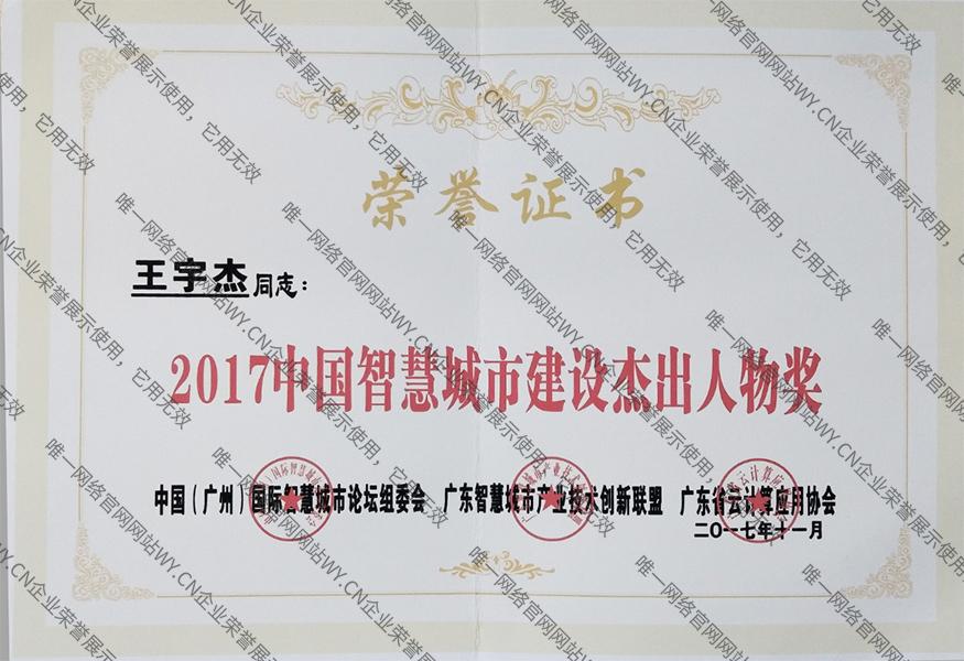 2017中国智慧城市建设杰出人物奖