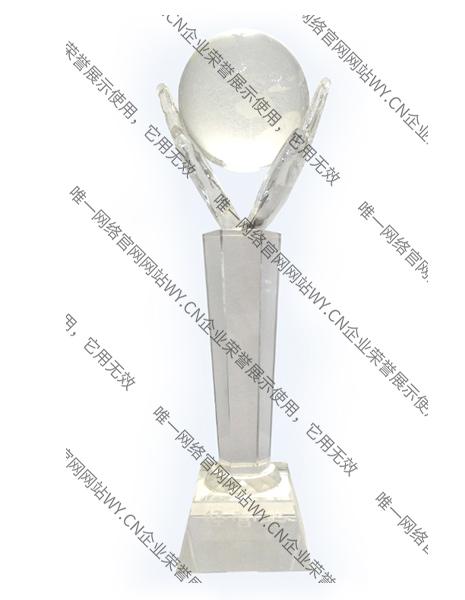 2012年唯一网络经营奖